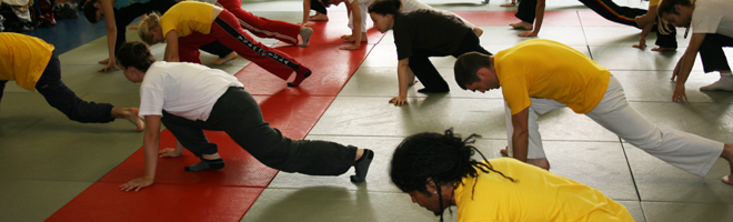 Stage de capoeira